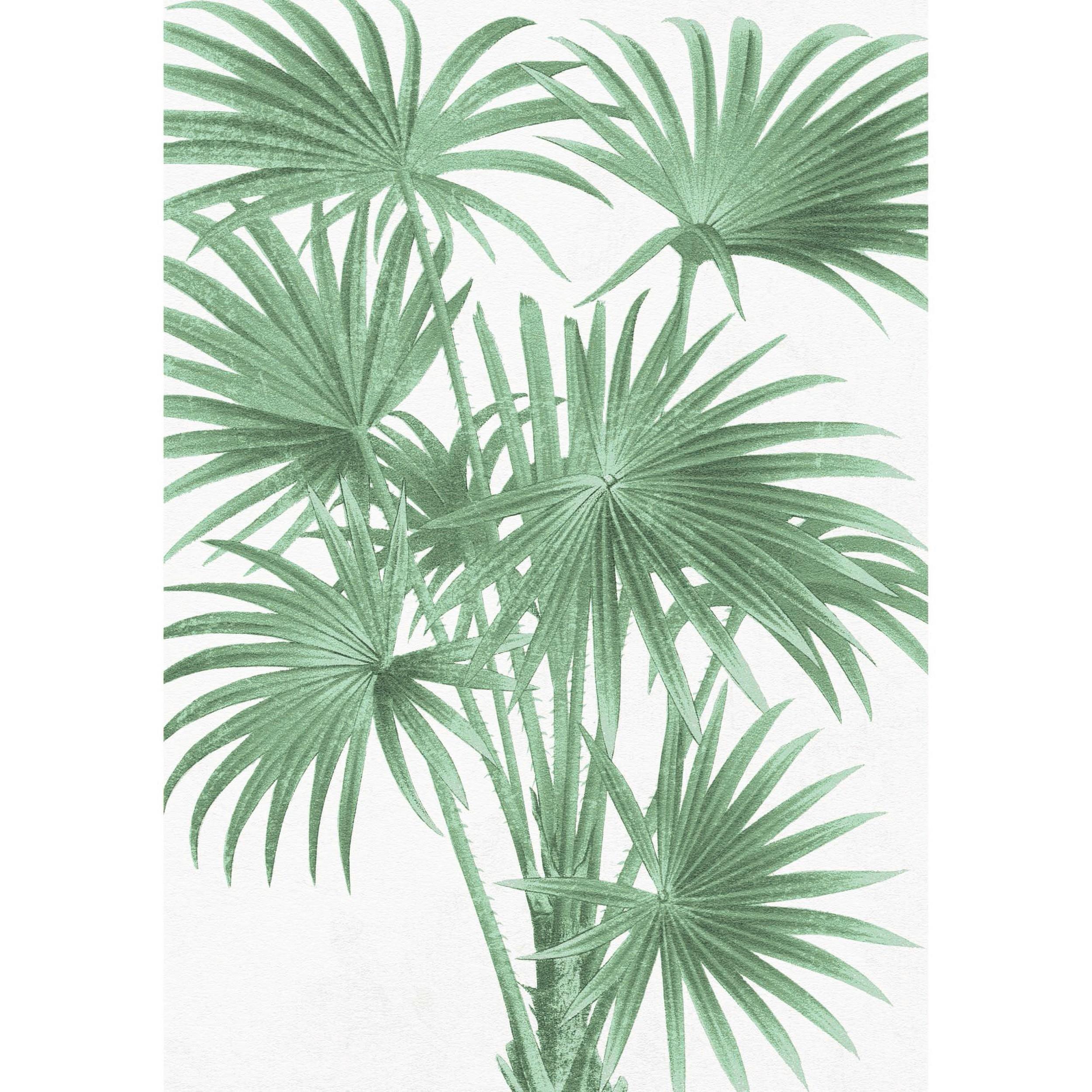 acheter tableau en verre summer 50 x 70 cm