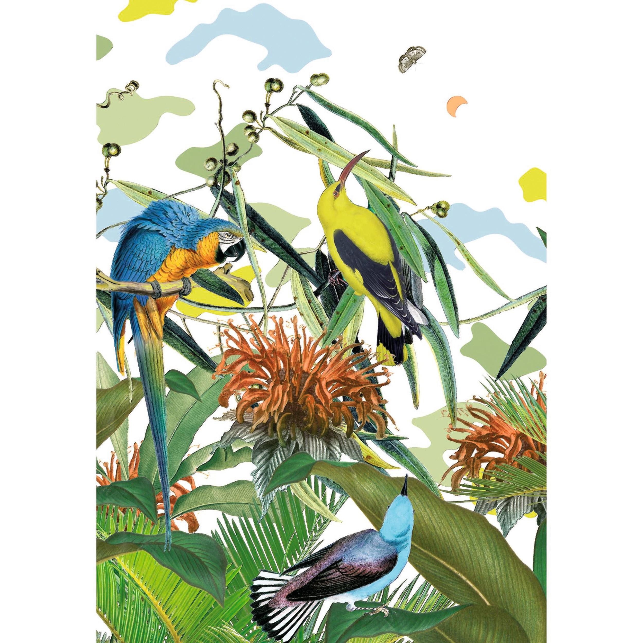 acheter-tableau-oiseaux-40-x70-cm