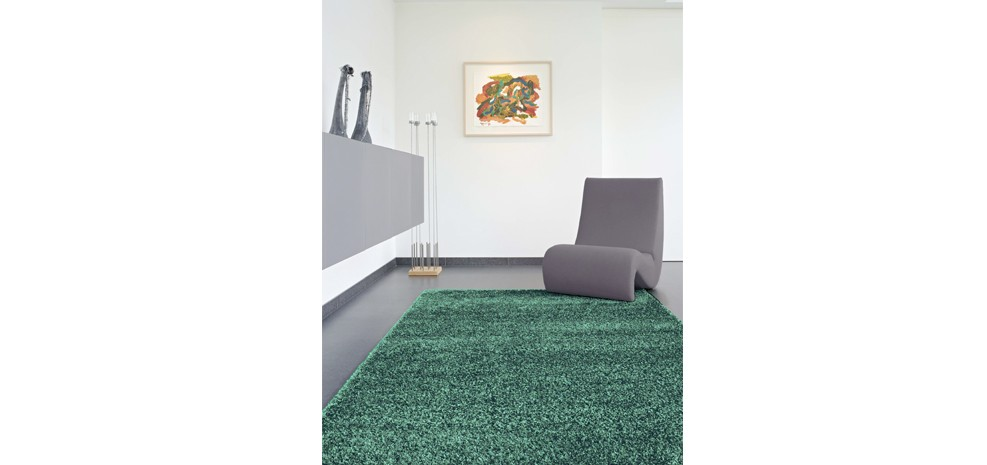 tapis l on vert 160 x 230 cm choisissez nos tapis l on verts 160 x 230 cm prix r duit rdv d co. Black Bedroom Furniture Sets. Home Design Ideas