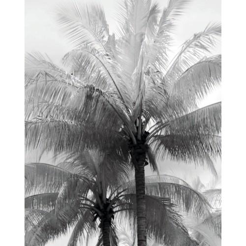 Poster Playa en papier 40 x 50 cm