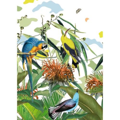 Poster Flori en papier 50 x 70 cm