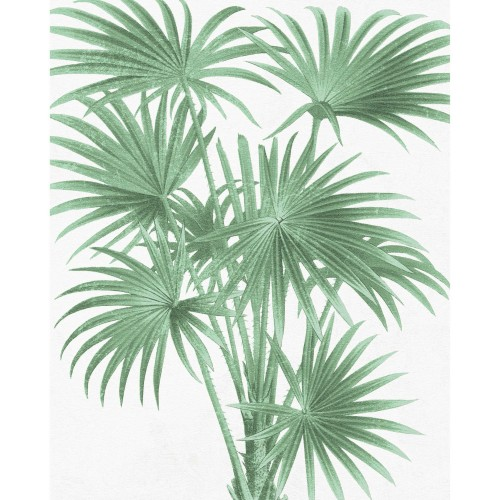 Poster Summer en papier 40 x 50 cm