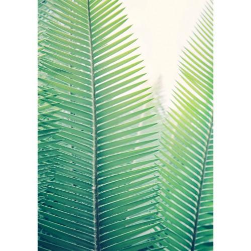 acheter tableau acrylique en verre palmier