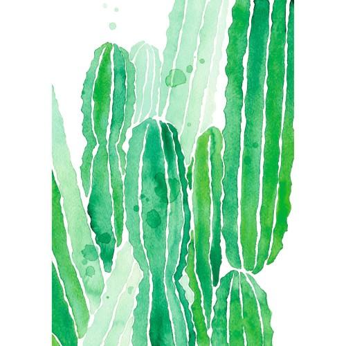 Tableau en verre acrylique Cactus 50 x 70 cm
