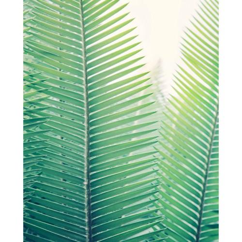 poster jungle papier 40 x 50