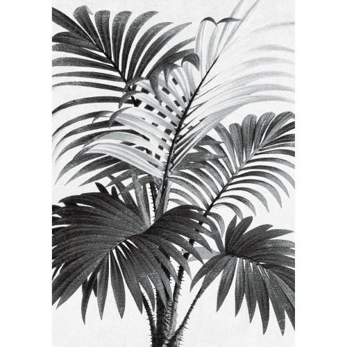 acheter tableau en verre palmier 50 x 70