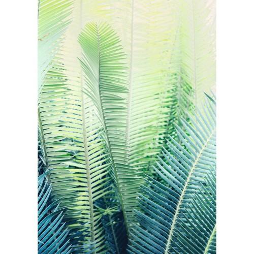 acheter tableau plexi en verre feuille palmier